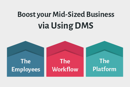 Boost your Mid-Sized Business via Using DMS